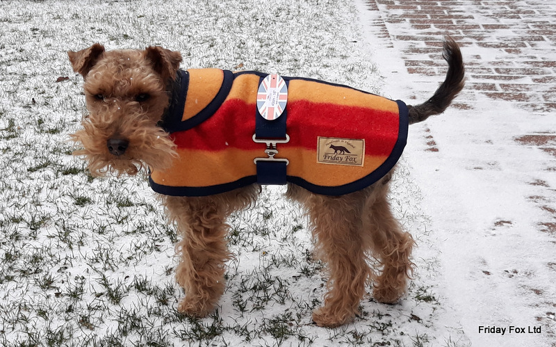 Witney Terrier & Small Dog Coat