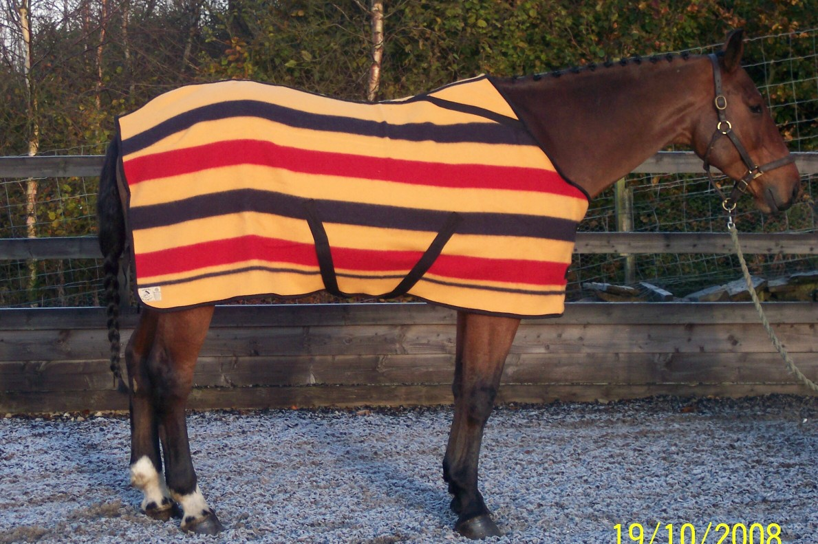 Fitted Witney Horse Blanket