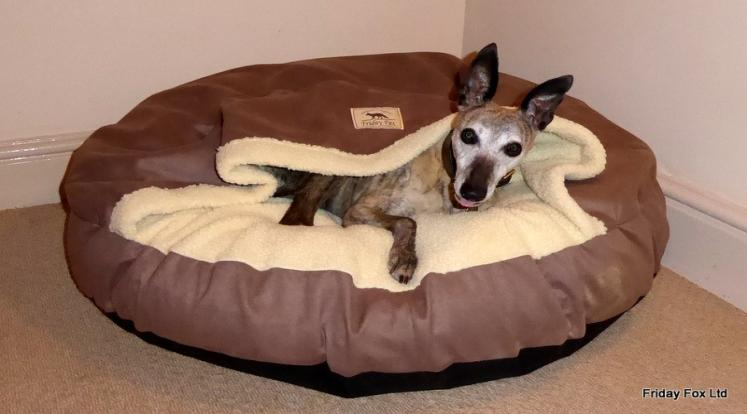 Fox Cave Whippet Dog Bed