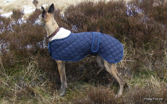 Quilted Whippet Coat