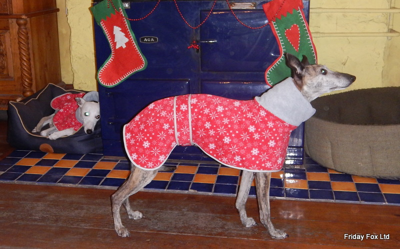 Festive Whippet Snood Coat